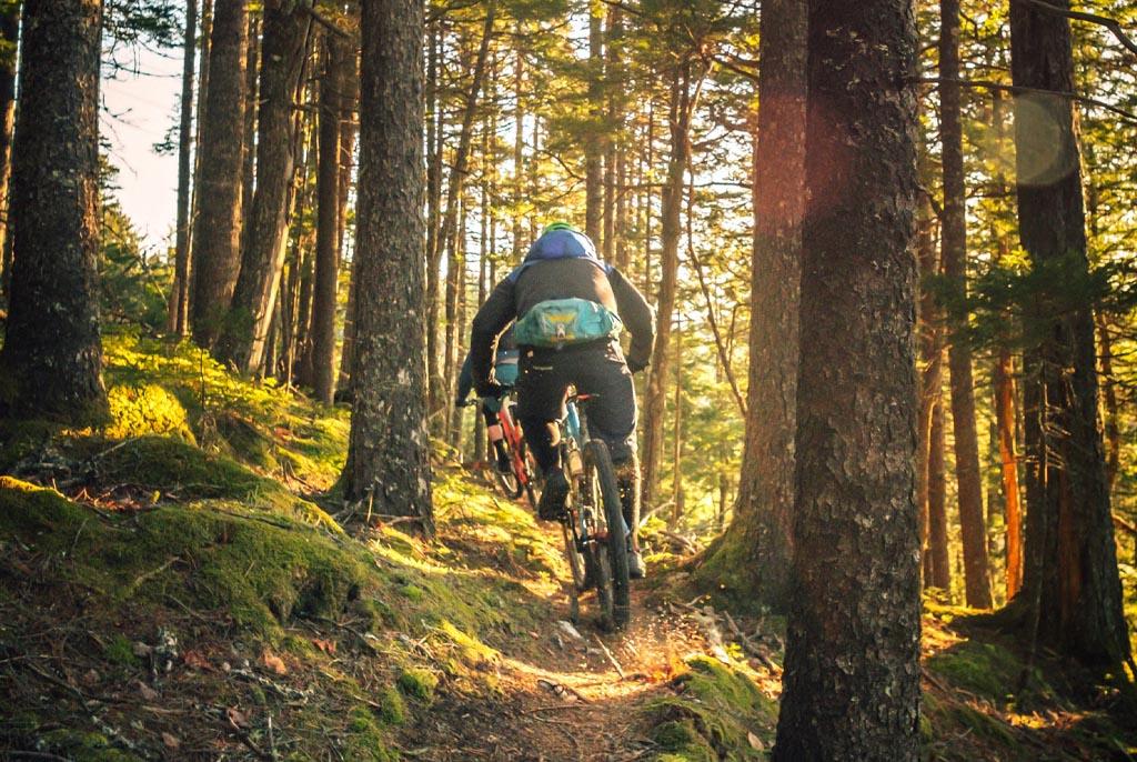 Mountain Bike Afan Forest