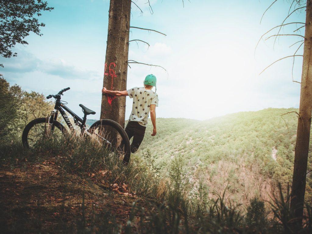 Mountain Biking on tree